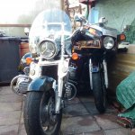 NevsMate's 1981 Goldwing GL1100